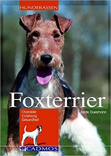 Foxterrier Buch
