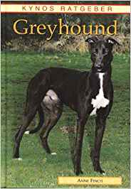 Greyhound Buch
