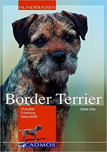 Border Terrier Buch