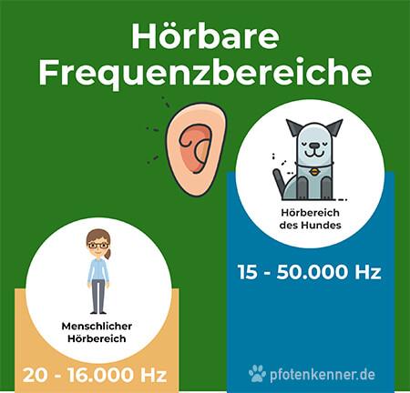 Hörbarer Frequenzbereich Mensch und Hund im Vergleich