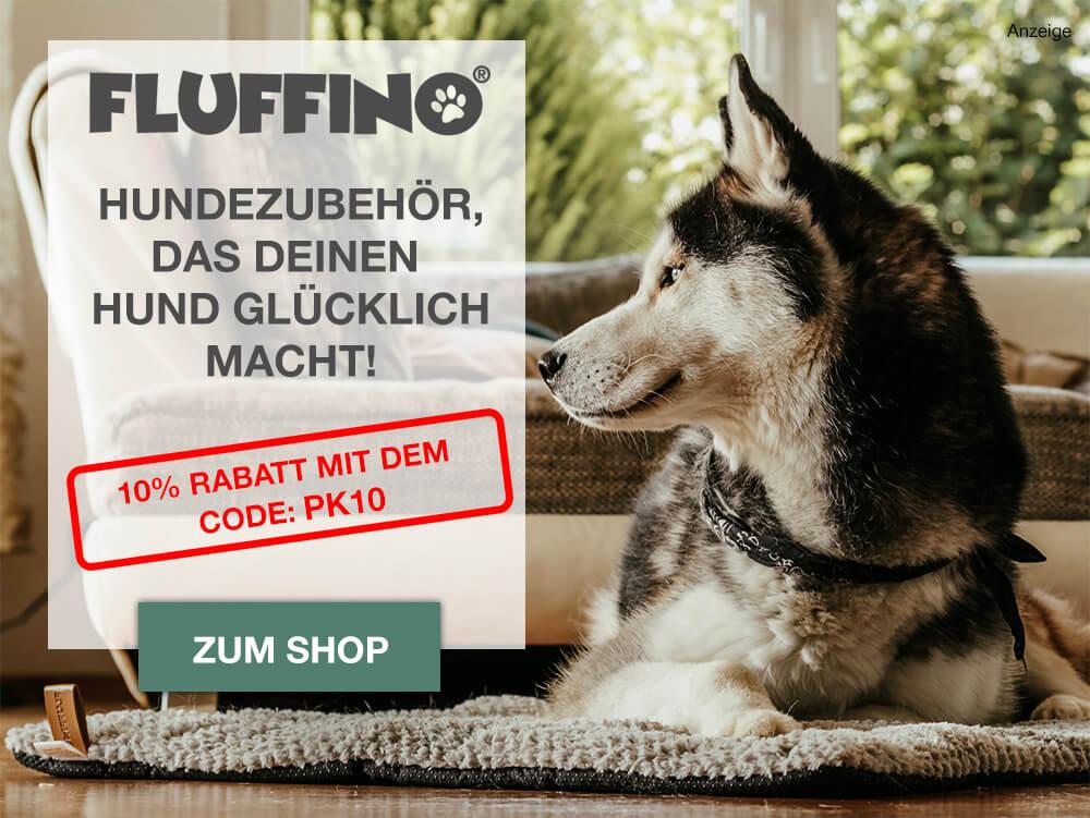 Hundequiz-Startseite - Frage 1