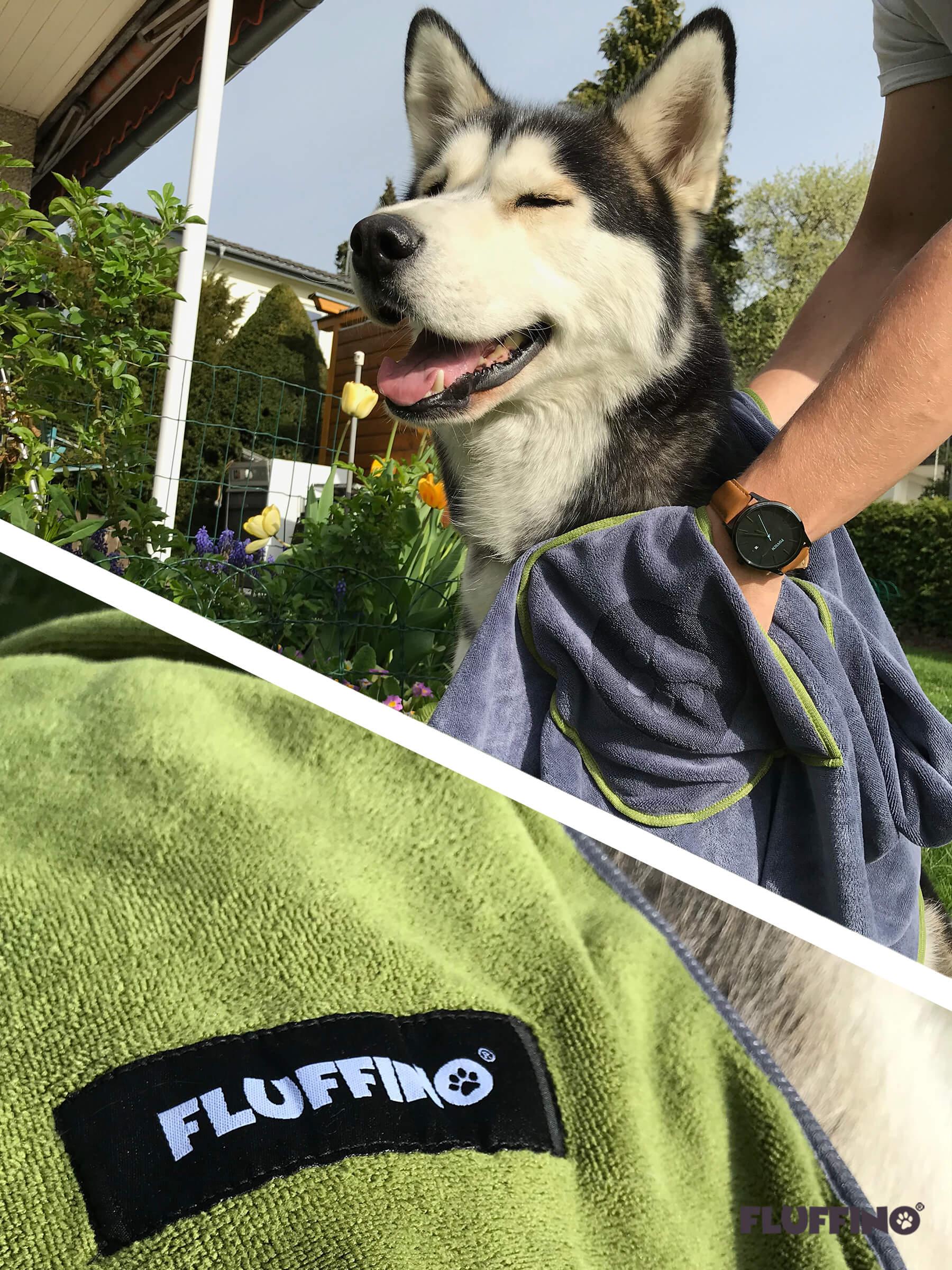 Husky der mit FLUFFINO Hundehandtuch abgetrocknet wird